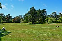 220px-San_Francisco_Botanical_Garden_Great_Lawn_1