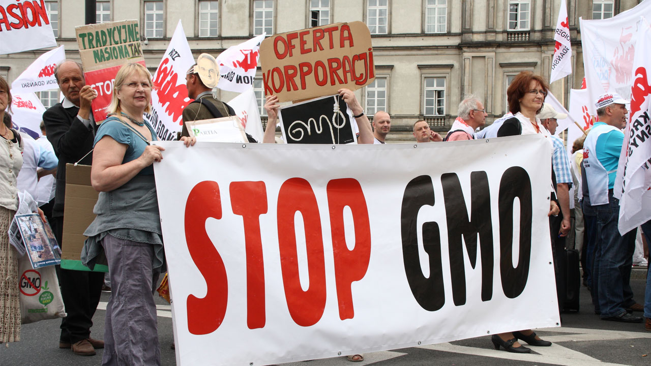 laws should be pass to label foods with genetically modified organisms News and comment on genetically modified foods and  get gmo labeling laws to pass,  requests to label gmo (genetically-modified organisms).